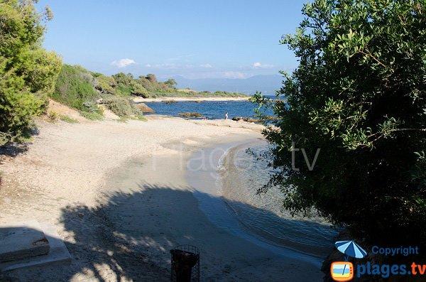 Spiaggia Scudo a Ajaccio