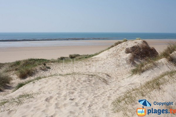Dunes of Portbail in France