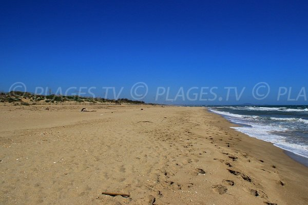 Plage de sable à Sérignan en direction de Portiragnes