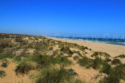 Beach with dunes in Sérignan - France