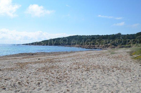 Ansa di Minaccia - Corsica