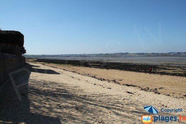 Plage de Sibiril à Carantec à marée basse