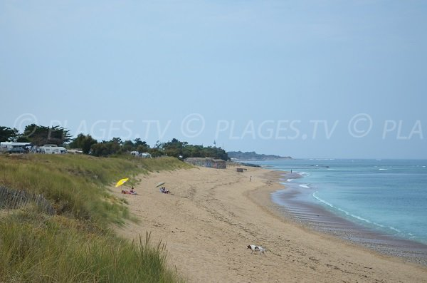 Beach in the north of Oleron island