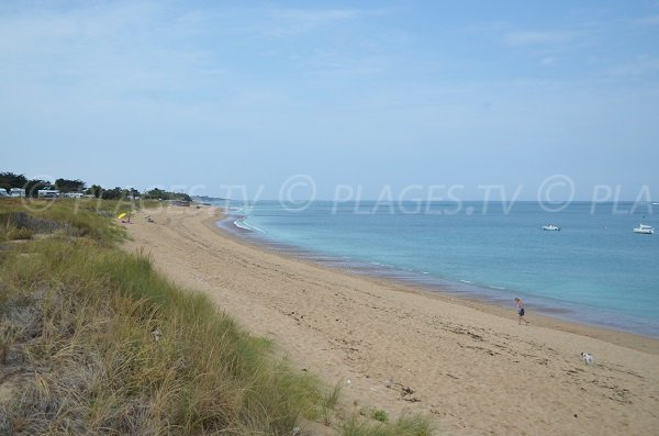 Photo of Soubregeon beach in St Denis d'Oléron