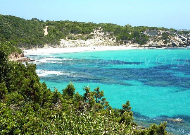 Spiaggia di Sperone (Corsica)