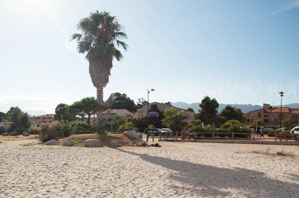 Parking de la plage de St Cyprien en Corse