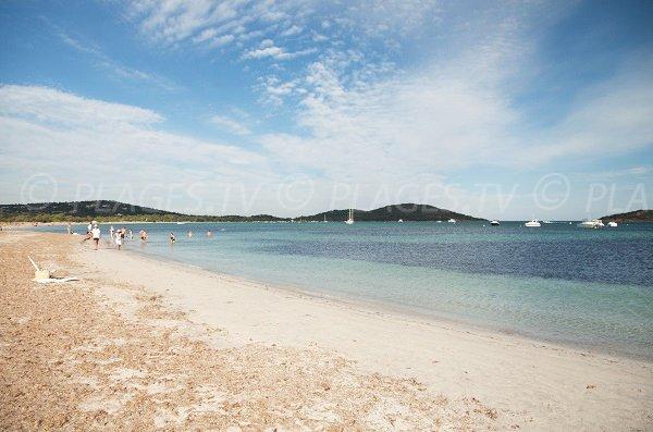 Spiaggia selvaggia di Saint Cyprien in Corsica Lecci