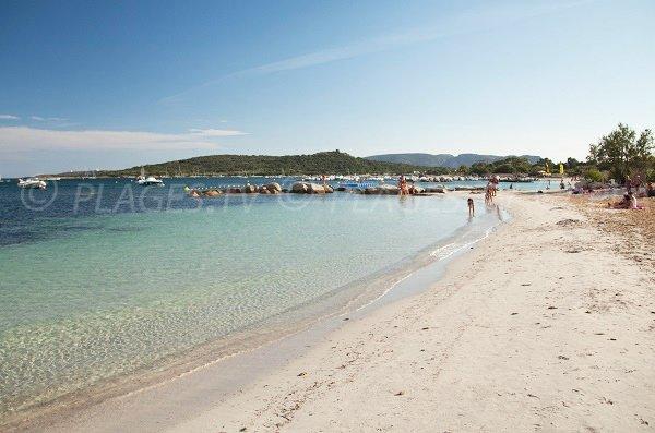 Spiaggia di Saint Cyprien Nord domina Cala Rossa