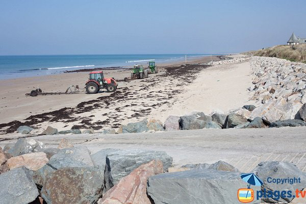 Tracteurs sur la plage de Saint Germain sur Ay