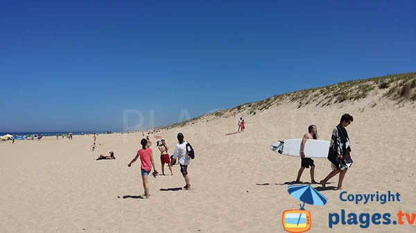 Dunes and surfers on the Saint Girons beach
