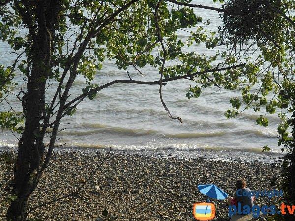 Ombre sur la plage de St Guimond
