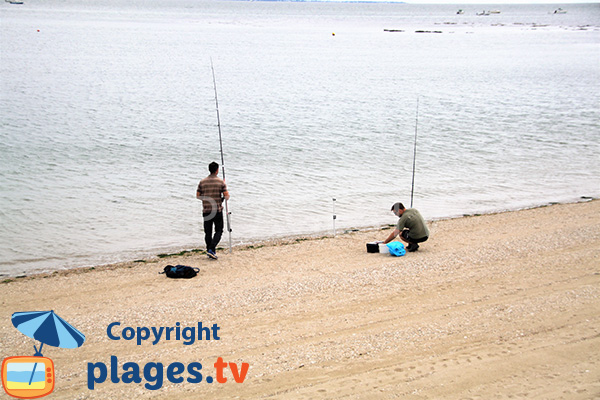 Pêche sur la plage de St Guérin