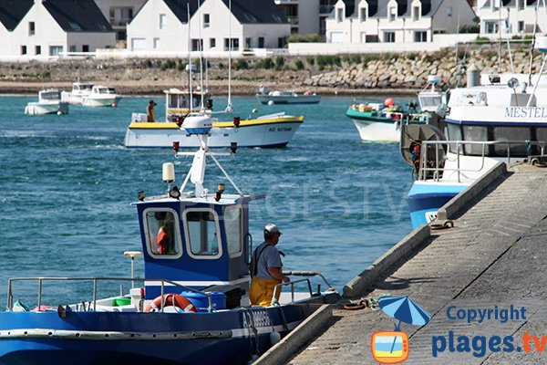 Port de pêche de Plouhinec