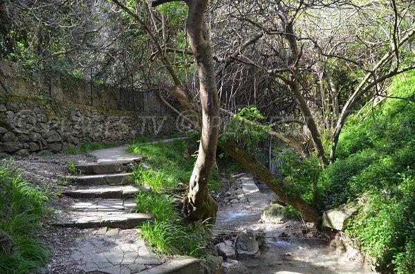 Ruisseau et escaliers plage de St Laurent d'Eze