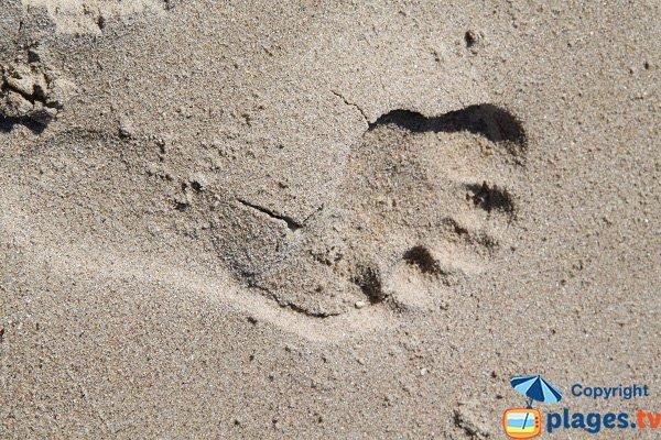 Sabbia della spiaggia di Erquy - St Michel