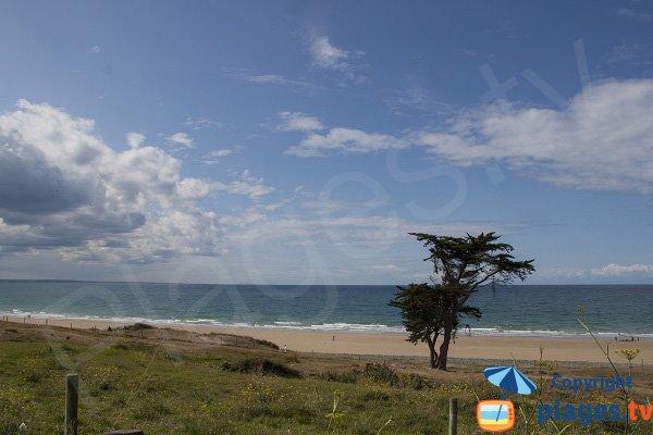 Photo of St Pabu beach in Erquy in France