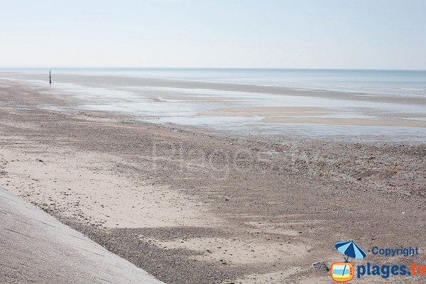 Plage de St Pair sur Mer à marée basse