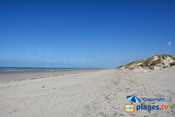 Photo de la plage de Marquenterre vers le nord