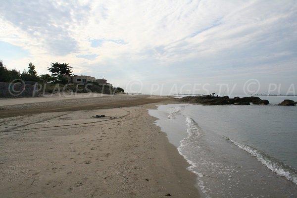 Environnement de la plage des Battuts au Grau d'Agde