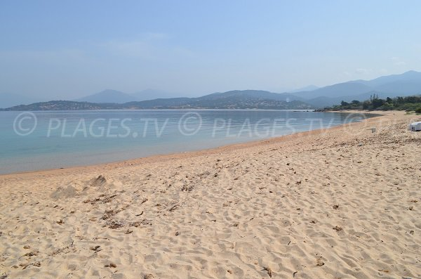 Beach in Ajaccio gulf - Olmeta beach