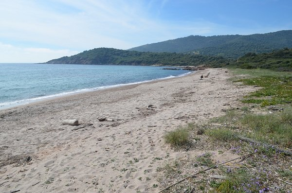Free sand beach in Cargèse