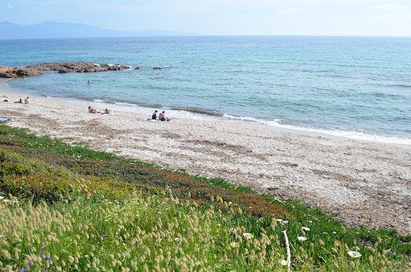 Sand beach in Cargèse - Stagnoli