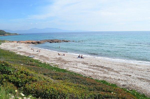 Stagnoli beach in Cargèse - Corsica