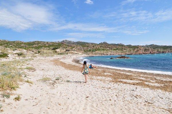 Nudismo è autorizzato spiaggia Bonifacio