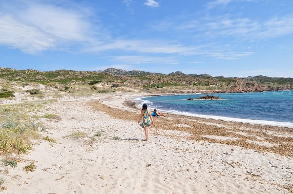 Belle plage à Bonifacio - baie de Stagnolu