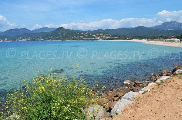 Photo of Stagnone beach in Calcatoggio in Corsica