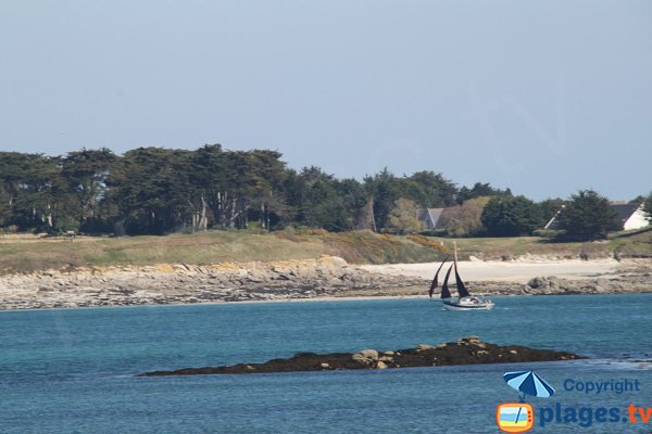 Island of Batz from the beach of Roscoff - biological station