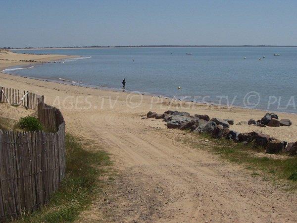 Accès à la plage de Ste Anne à La Tranche en Vendée