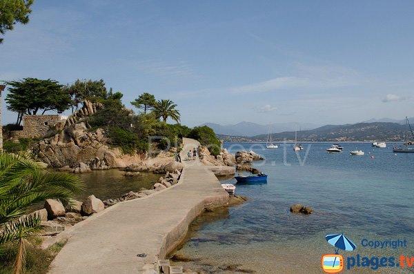 Island of Ste Barbe - Isolella