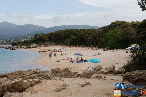 Extrémité de la plage de Ste Barbe - Corse
