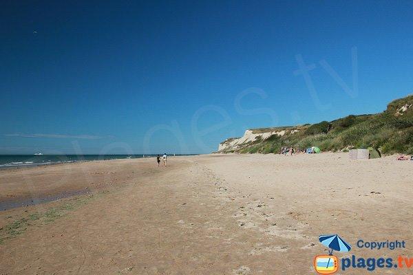 Wild beach in Wissant