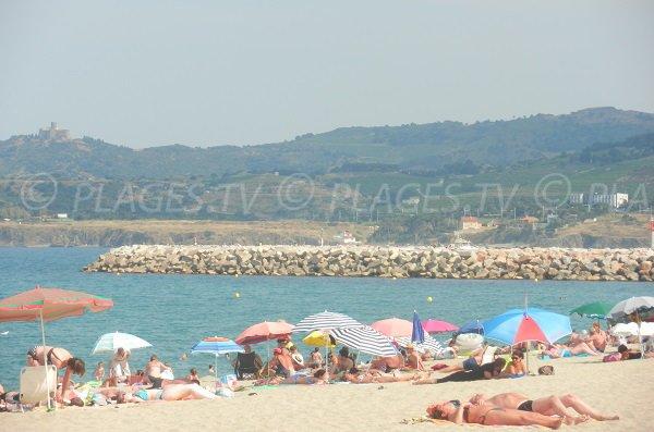 Plage à côté du port d'Argelès proche du centre-ville