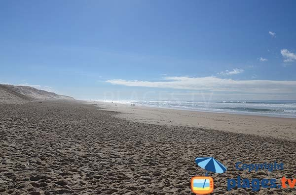 Beach in Biscarrosse in summer