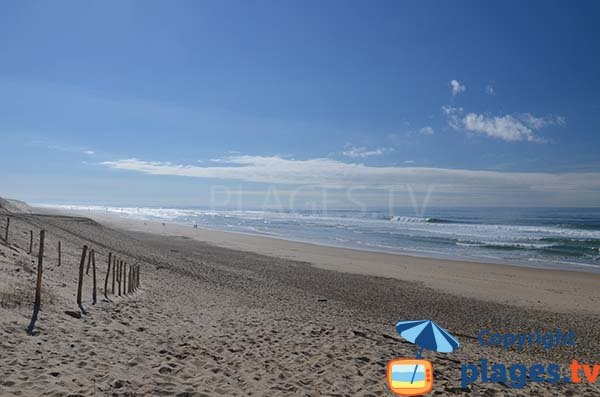 South beach in Biscarrosse in France