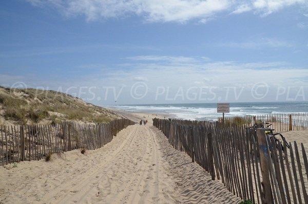 Sentier pour descendre sur la plage sud de Carcans
