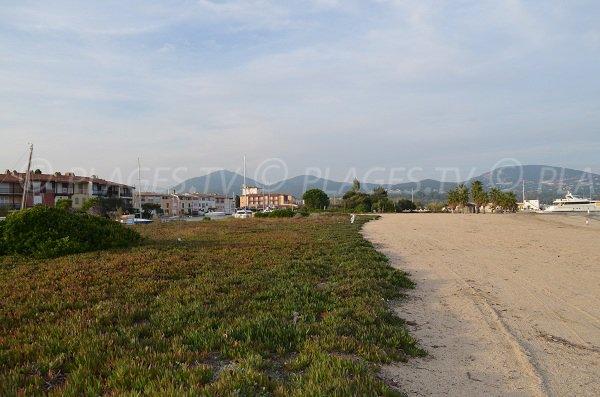 Environnement de la plage sud de Port Grimaud