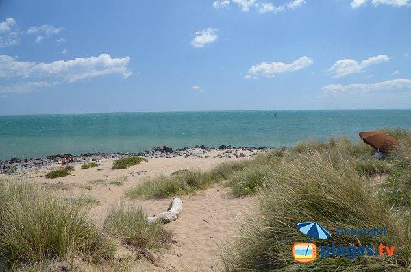 Saint pierre sur mer south beach in fleury d 39 aude aude - Saint pierre la mer office du tourisme ...