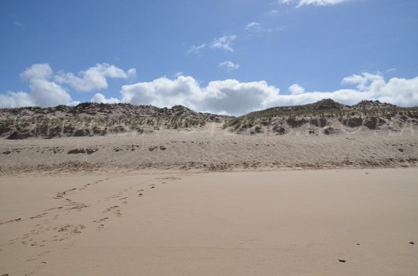 Dunes of Super South beach in Lacanau