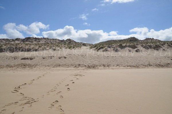 Sentier à travers les dunes pour accéder à la plage de Super Sud de Lacanau