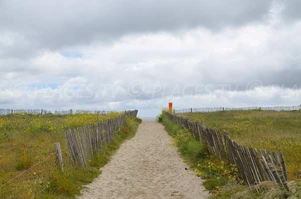 Sentier d'accès à la plage de Suscinio