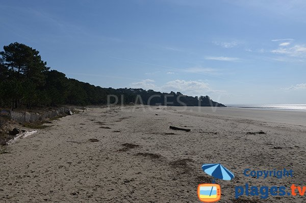 Suzac beach at low tide - Meschers sur Gironde