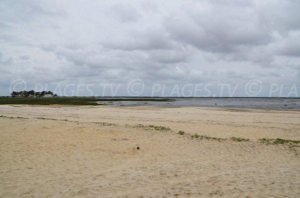 Plage peu connue sur le bassin d'Arcachon à Lanton