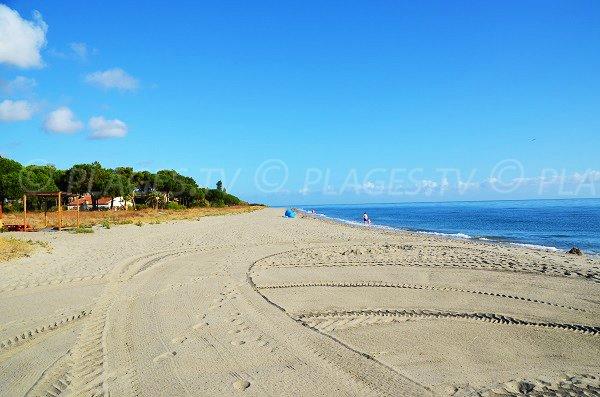 Photo de la plage de Taglio Isolaccio en Corse