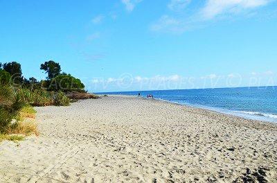 Spiaggia di Talasani - Haute Corse