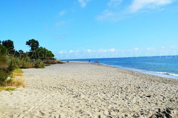 Photo de la plage à proximité de Figareto en Haute Corse