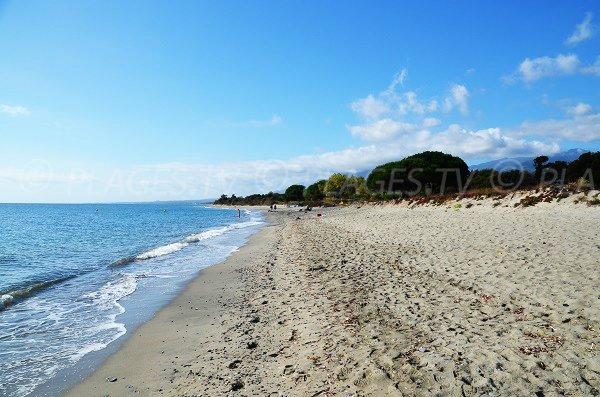 Photo de la plage de Figareto 20230
